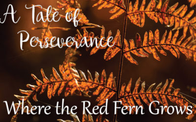 A Tale of Perseverance: Where the Red Fern Grows.