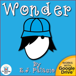Boy with a hat Wonder Novel Study Compatible with Google Drive