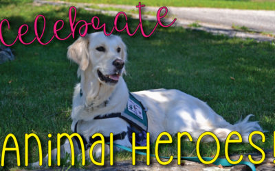 National Therapy Animal Day is Approaching!