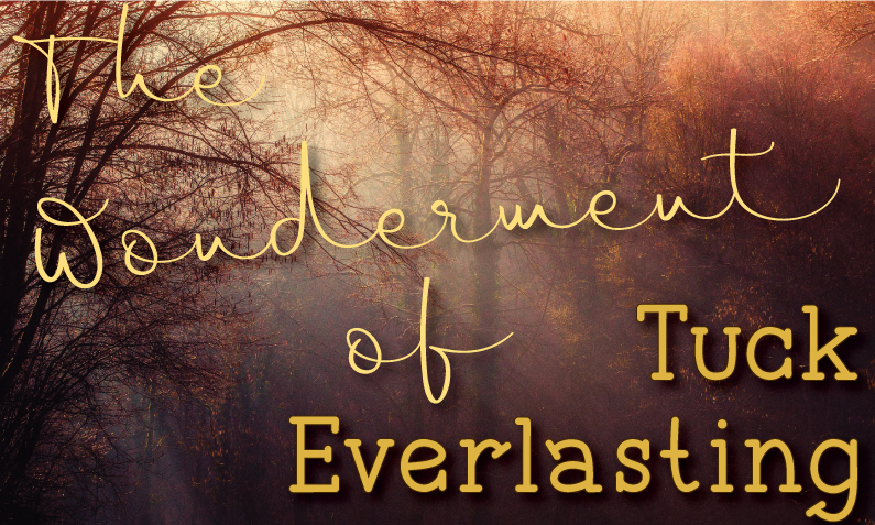 "Barren forest with filtered light and a title of ""The wonderment of Tuck Everlasting"""