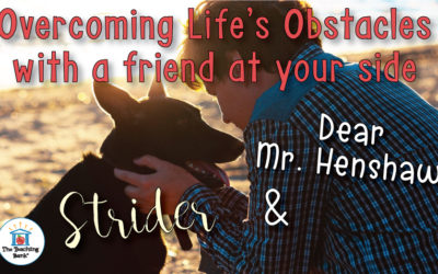 Overcoming Life's Obstacles with a Friend at your Side.